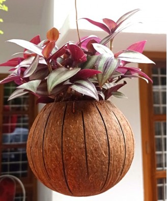 Eco-Friendly Flower Hanging Pot Brass Broidered Coconut Shell Crafts Of Kerala