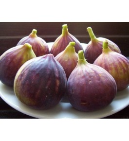 Purandar Fig (Anjeer) Fresh Fruit 500g
