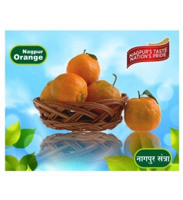 Nagpur Orange Juicy & Pulpy (2 Dozen) By Mahaorange