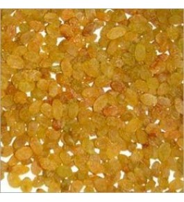 Healthy & Tasty Yellow Raisins (10 kg) By Samarth Agrotech