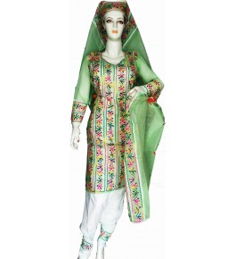 Beautiful Applique Work Green Color Suit For Women By Snowdrop