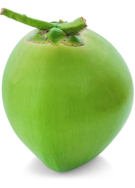 EATHOMOZHY TALL COCONUT