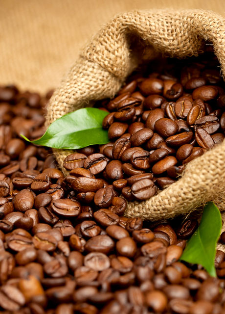 COORG ARABICA COFFEE