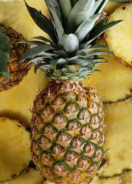 TRIPURA QUEEN PINEAPPLE